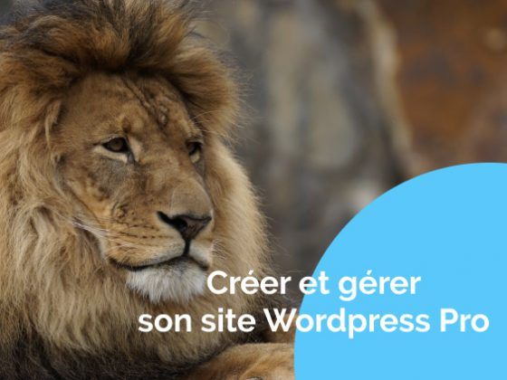 creer-gerer-site-wordpress-lion